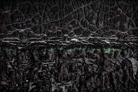 Eco Dreams Through The Charred Valley Of Darkness