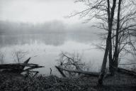 Kendall Lake Fog #1