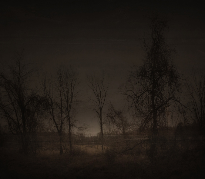 Dark Expectations II