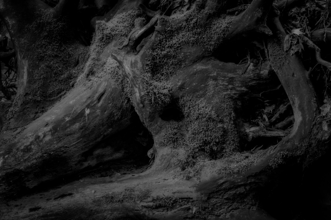 Dark Caverns