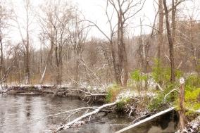 First Snow - Riverside