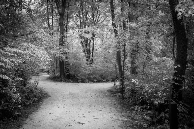 Trails Reach