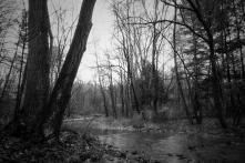 autumn streams