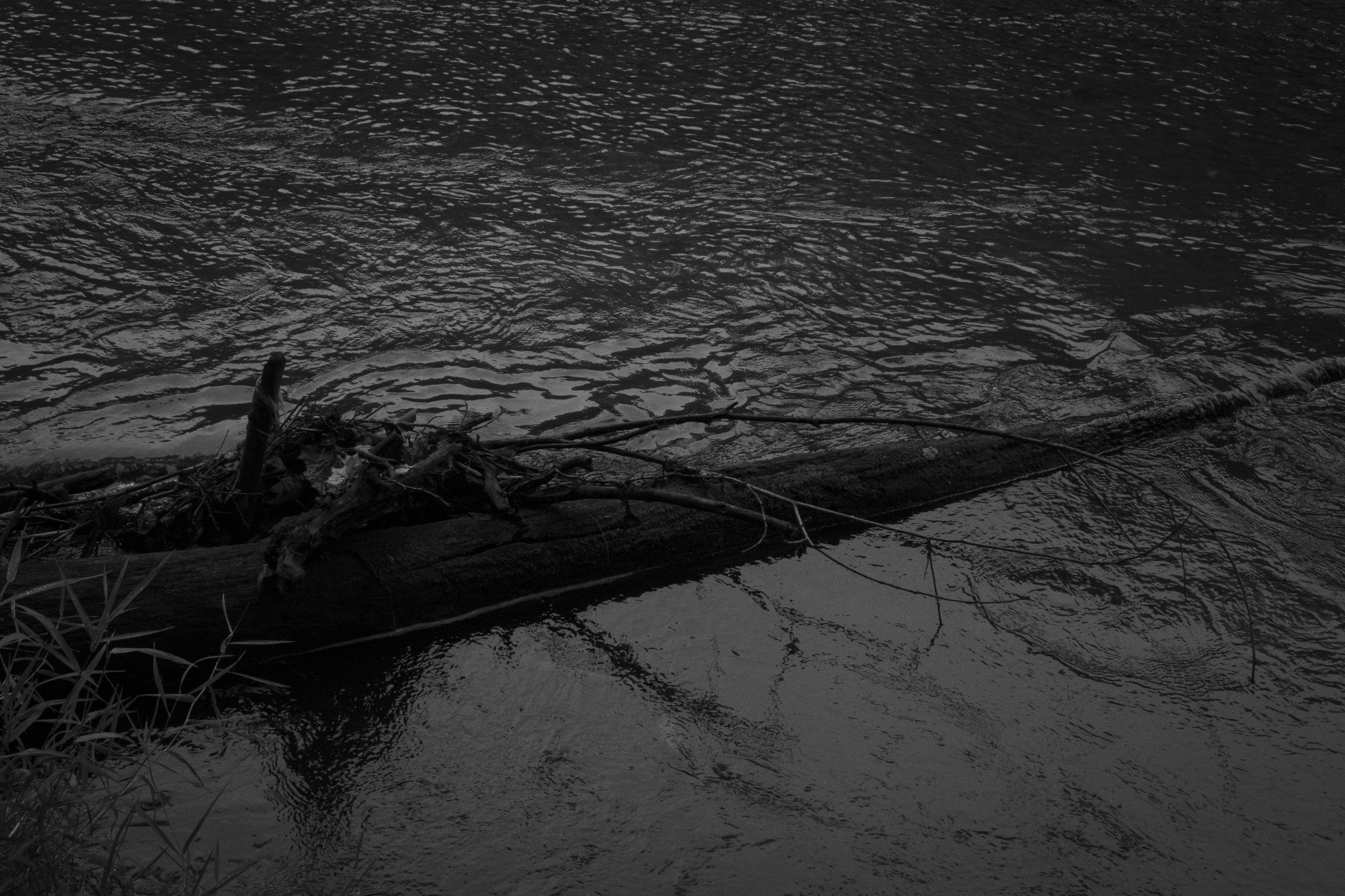 By The Dark Water IV