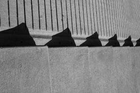 Shadow of Godzilla