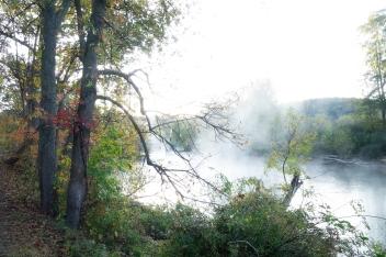 A Foggy Change Of Seasons