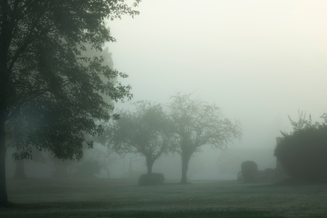A Rising Fog