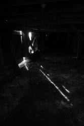 Light Through Darkness
