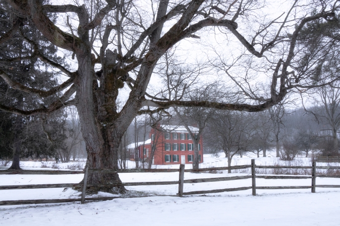 Colonial Winter