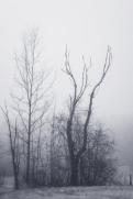Herne's Hunted Mythical Mist