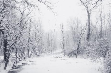 Snow Falls Like Forgiveness